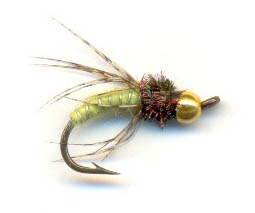 Green Caddis Pupa