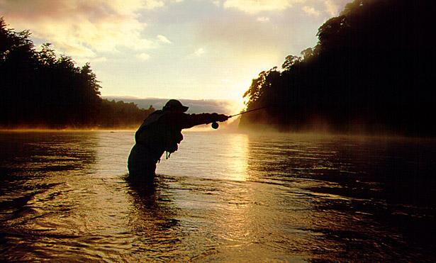 Pescando al Amanecer en un Río del Sur de Chile