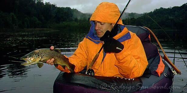 Pescando en lago durante el otoño