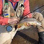 Recomendaciones de Pesca para el Final de Temporada de Truchas