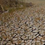 Evaluación ambiental de Chile frente a la OCDE