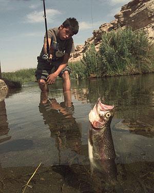 Pescar desierto