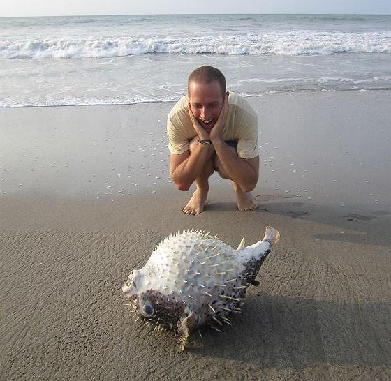 cosas raras playa