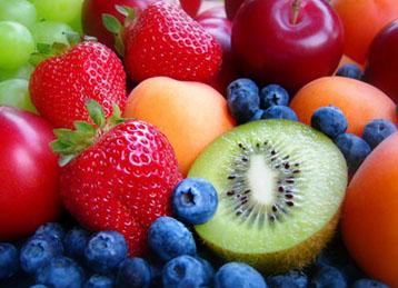 dietas de proteinas para adelgazar rapido gratis