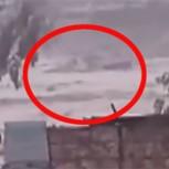 Temporal en el norte de Chile: Video muestra cómo río se desborda y arrasa un pueblo
