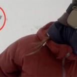¿Es real este video en el que un oso casi devora a una mujer en la nieve?