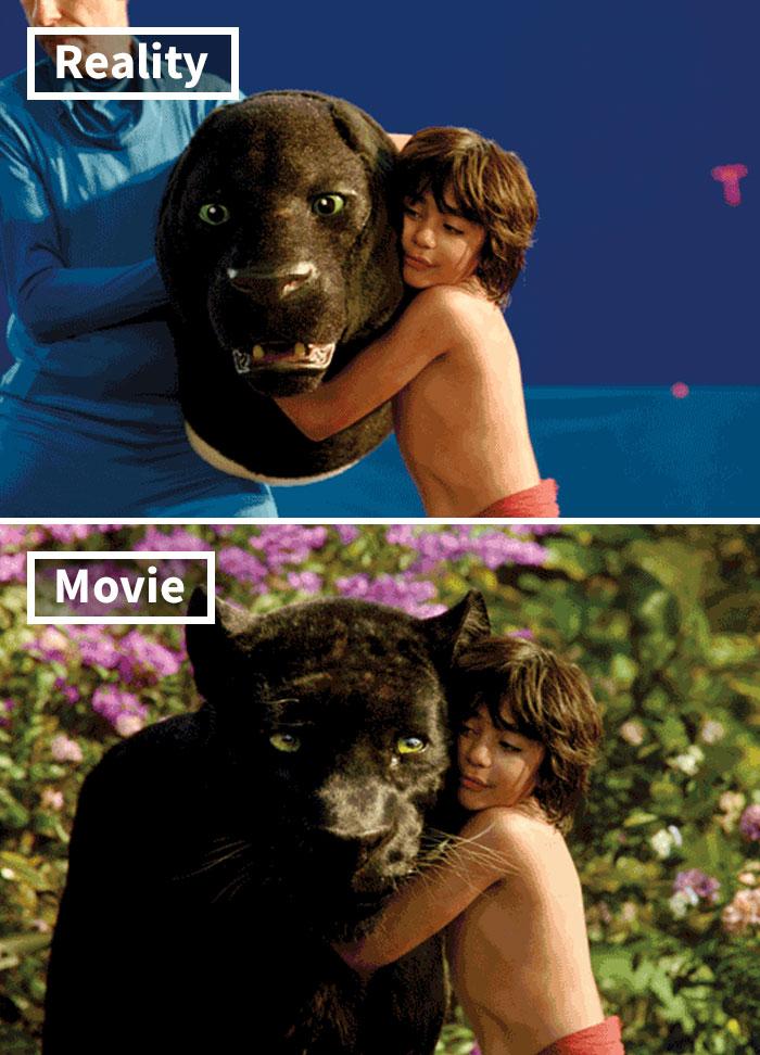 cgi-mowgli